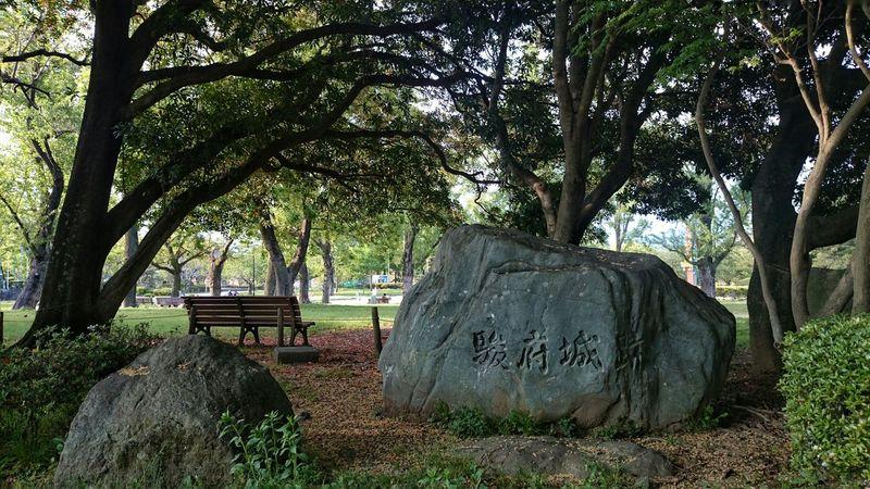 駿府城公園でのベストショットがコレ♪イイ感じに撮れてお気に入り♪ Stone Stones Trees Bench In The Park Park Travel Photography EyeEm Nature Lover EyeEm Best Shots at Shizuoka-shi, Japan.