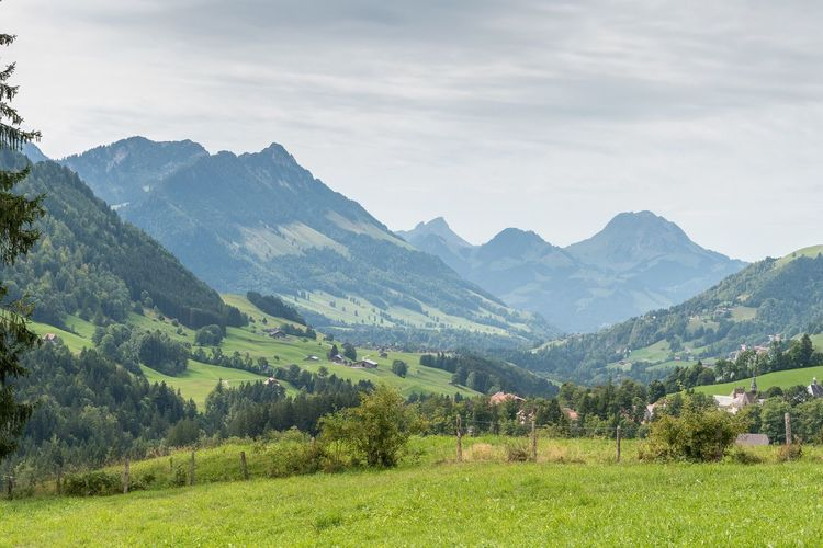Swiss Montains