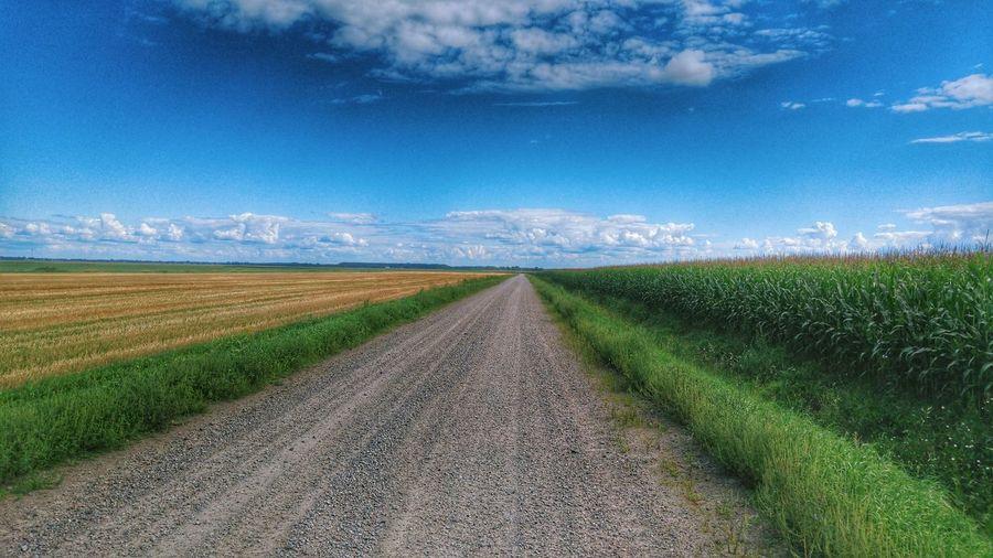 Cycling Nature Road Roadtrip