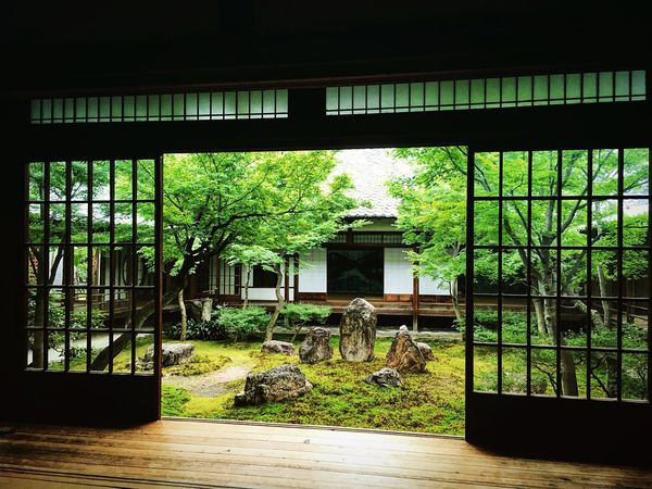 建仁寺 汐音庭 東山 京都 Kyoto Japanese Garden Hello World Enjoying Life Relaxing Kyotojapan Garden