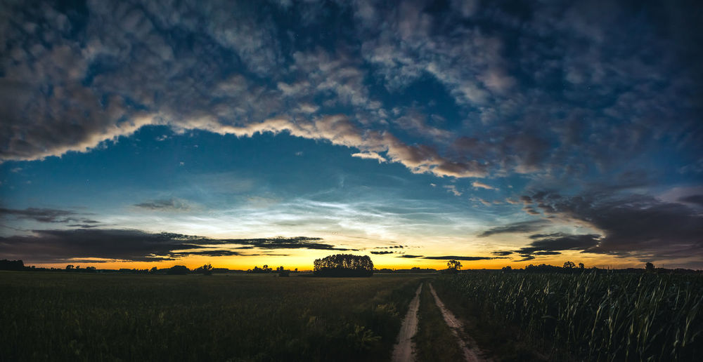 Noctilucent Cloud Agriculture Beauty In Nature Cloud - Sky Direction Environment Field Growth Land Landscape Nature Night Nlc No People Outdoors Plant Rural Scene Scenics - Nature Sky Sunset The Way Forward