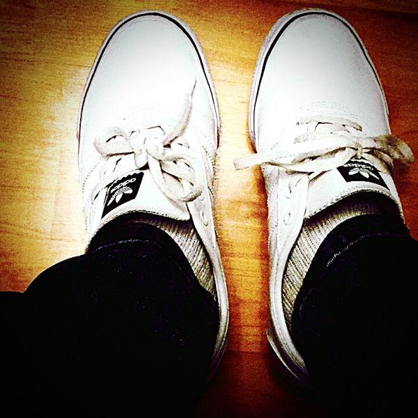 Fresh Adidas Mufc
