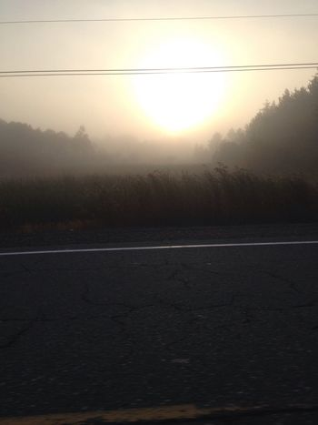 What The Fog Morning