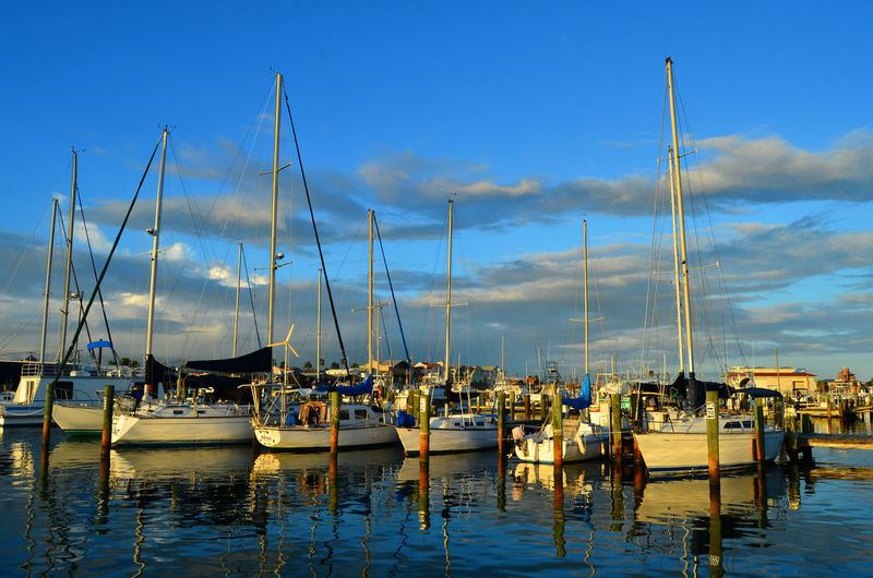 Blue Skies Calm Waters Gulf Coast Harbor Anchored Beautiful Boats Blue Boats Boats And Water Boats In Marina. Boats On The Water Harbor Marina Mast Nautical Vessel No People On The Road Peaceful Port Reflections Sailboats Sailing Sea Waterfront Yacht