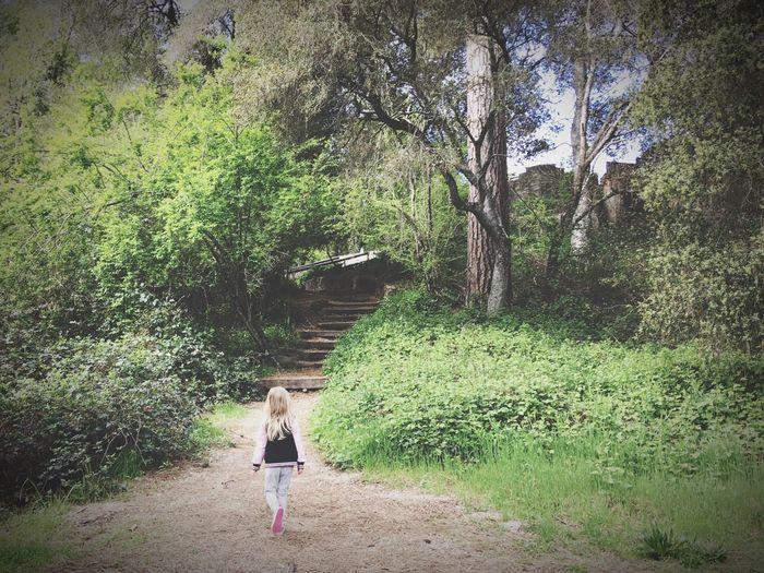 Girl Power Feel The Journey Highlands County Park Ben Lomond California Santa Cruz Mountains Walking Into The Woods Child Girl On The Way Hidden Gems