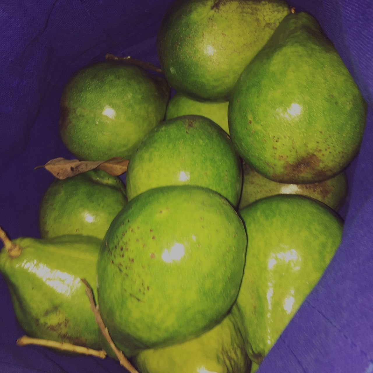 fruit, food and drink, food, green color, high angle view, healthy eating, no people, freshness, indoors, close-up, mango, day