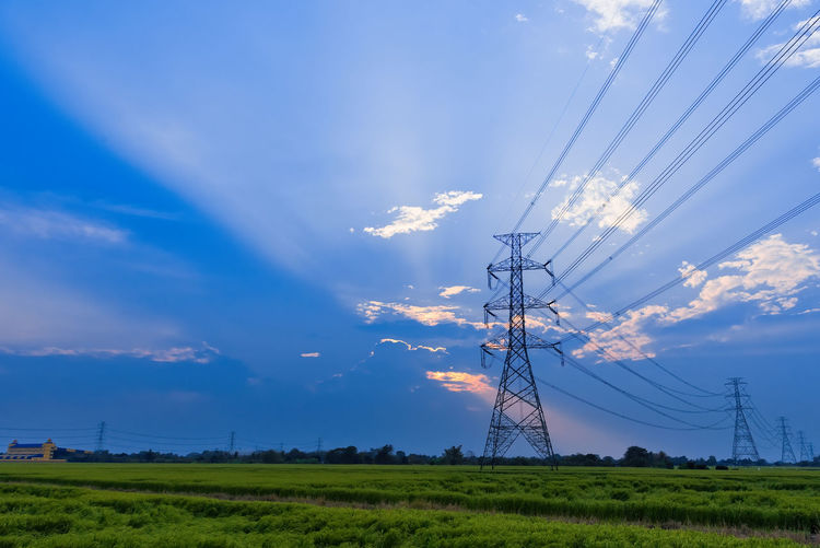 High-voltage power transmission towers in the rice field during the sunset.Thailand High LINE Rice Paddy Sunset Silhouettes Backgrounds Blue Cable Electricity  Electricity Pylon Everning Everning Sky Sunset
