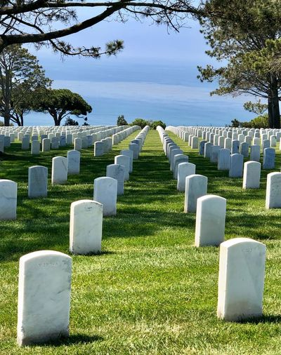 San Diego, California Cemetery Grave Stone Tombstone Plant Grass In A Row Memorial Nature Day No People Sunlight Sky Religion Tree Outdoors History Architecture