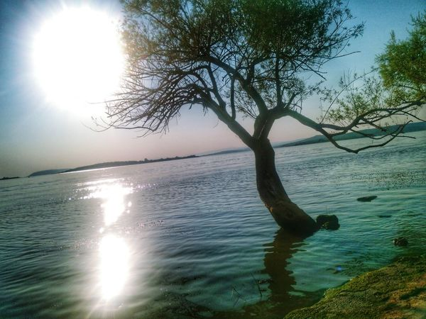 Gölyazı Bursa Enjoying Life