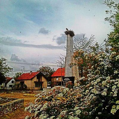 Spomenik Bagljas Stork Ilovezr cloudy instasky