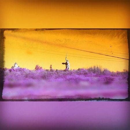Очередная деловая командировка в город-герой Волгоград Astrakhan Street 30my 30rus YouAst Instrakhan Sunset Spring2015 Trip Закат Sky Vscocam Typastr City Hight Vscobest Picture Tiltshift Russiaphoto Astrakhan_tourism Volgograd 34rus 34my Instashot instagood instalike