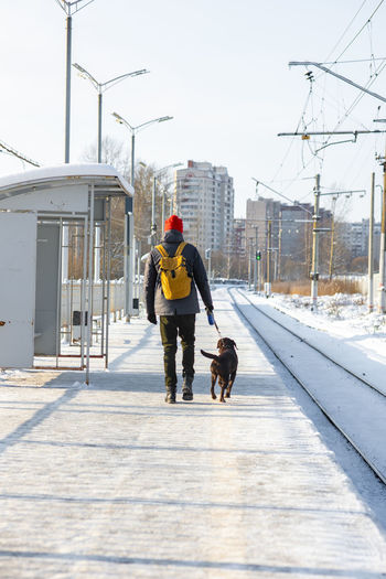 Rear view of man with dog walking in snow