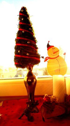 Christmas Tree Studentlife  Sunny☀ Snowman
