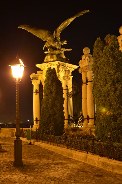 Budapest Castle Famous Place Historic History Night Statue Street Light Tourism Turul Hungary