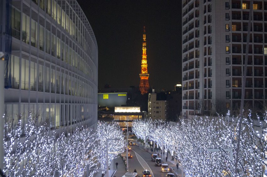 Architecture Building Exterior City Illuminated Japan Lights Night Outdoors Tokyo Tokyo Tower
