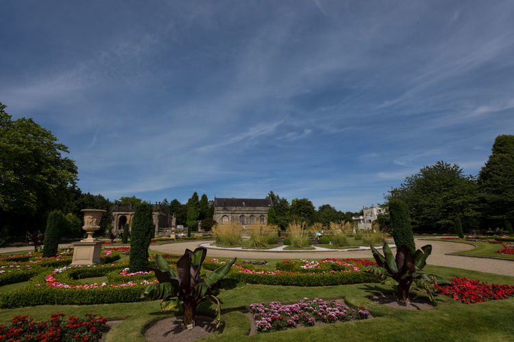 Plants growing at trentham gardens against sky