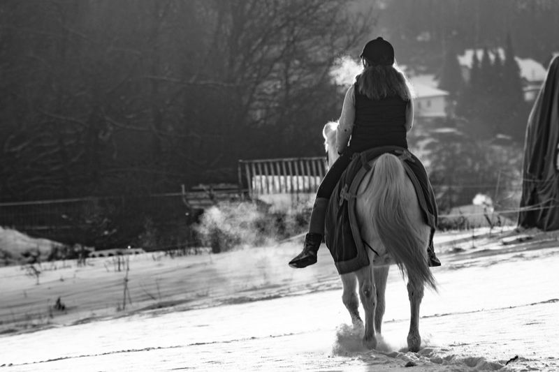 Full length rear view of female jockey riding horse on snow covered field
