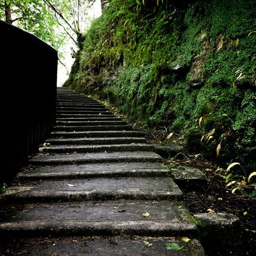 Steps to the end!! Orthestart Ireland