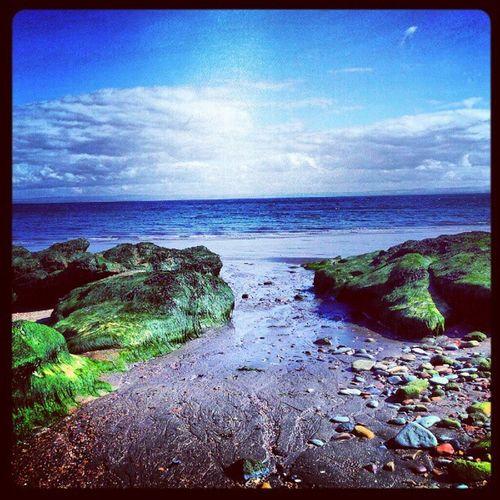 'Serenity' Ravenscraig Kirkcaldy Fife  Scotland Beach Rocks Scenery Cloudporn skyback sky skyporn igscout igscotland igtube igaddict Igers igdaily Tagstagram most_deserving iphonesia photographyoftheday instamood instagood instanaturelover PicOfTheDay bestoftheday Primeshots