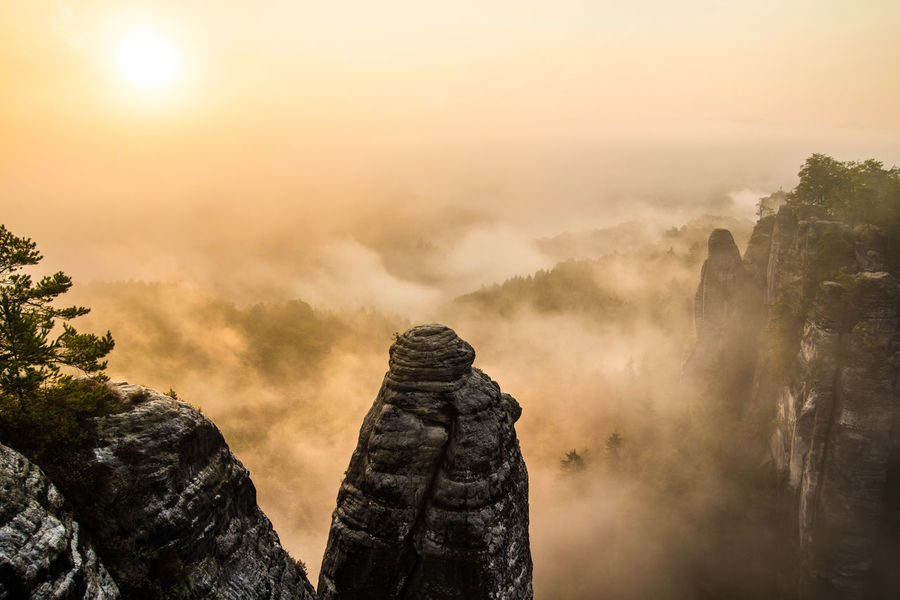 I like to call it the Grand Canyon of Germany ... I think you can guess why ;) | Bastei Fog Golden Landscape Morning Nature Sun Sunrise Trees