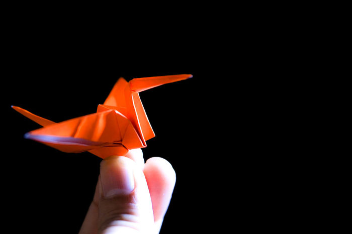 Art Bird Paper Black Background Flying Illustration Japan Origami Origami Bird Origamiart