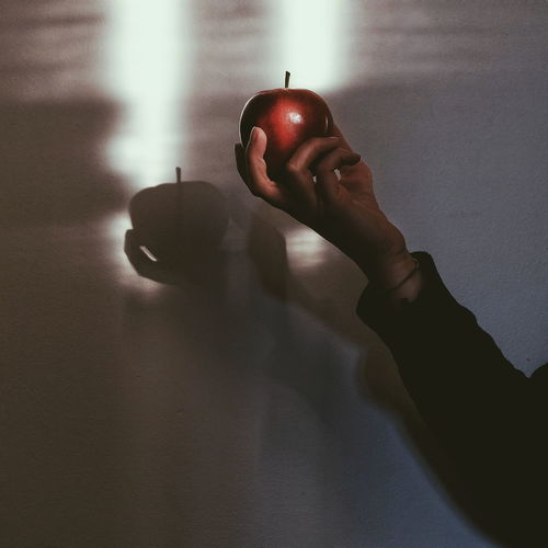 Midsection of person holding apple against wall