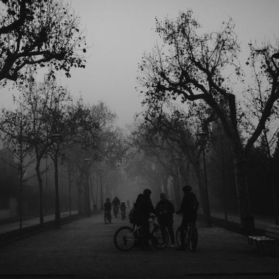Walking Around Exploring Streetphotography EyeEm Best Shots - Black + White