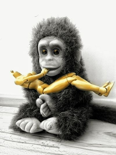 Headless Nackt Kopflose Barbie Kopflos Benjamin Tomkins Pet Monkey King Kong Affe Chimpanzee Schimpanse Love