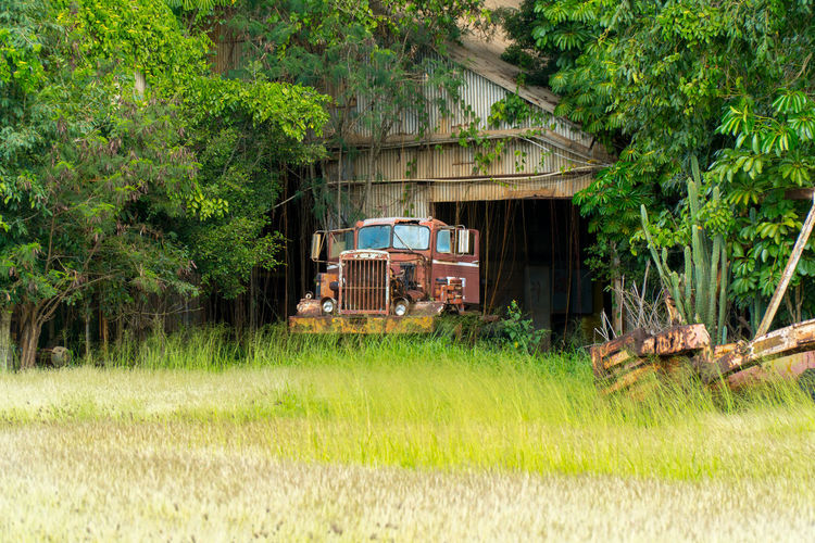 Adapted To The City Rural Scene Agricultural Machinery Farm Agriculture Old Nature Abandoned Abandonded Cars Mode Of Transport Damaged Truck Rusty Old Truck Old Buildings First Eyeem Photo EyeEm Best Edits EyeEm Best Shots EyeEmNewHere Sony A6300 No People Travel Kauai, Hawaii Sugar Mill Outdoors Miles Away Lieblingsteil