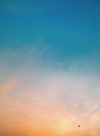 Sunset Sky Flying Cloud - Sky Low Angle View Outdoors Nature Backgrounds Blue Beauty In Nature No People Bird Airshow Day Indianphotographer HTC_photography Htcphotography Eyemphotography Eyem Gallery EyeEmshots Personal Perspective Pixelsphotography Eyem Best Shots
