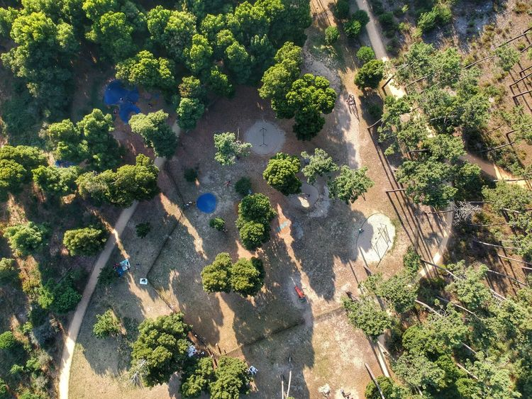 Birdseye view of the kids playground - Esmoriz, Portugal 2018 Birdseyeview Playgroung Dji Spark Dronephotography DJI X Eyeem Plant Sunlight Growth High Angle View Day Nature No People Shadow Land Outdoors Field Green Color Tranquility Beauty In Nature Full Frame Backgrounds Sunny Cactus Freshness Playgroung Dji Spark Dronephotography DJI X Eyeem Plant Sunlight Growth High Angle View Day Nature No People Shadow Land Outdoors Field Green Color Tranquility Beauty In Nature Full Frame Backgrounds Sunny Cactus Freshness