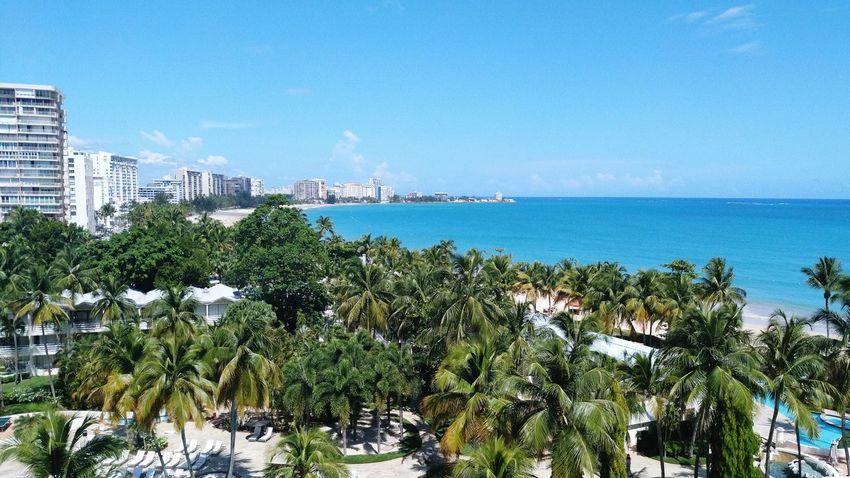 Beach Puerto Rico San Juan Palm Trees First Eyeem Photo