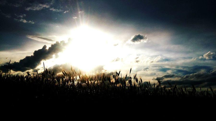 Clouds Sunshine Hello World Photioftheday Poland Polandisbeautiful Sunset #sun #clouds #skylovers #sky #nature #beautifulinnature #naturalbeauty #photography #landscape