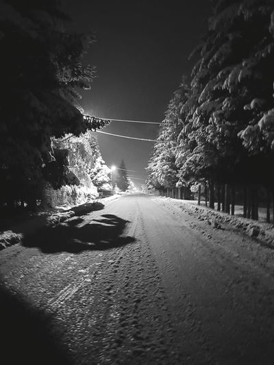 Nature Night Water No People Tree Beauty In Nature Outdoors Sky Road Snow ❄ Winter