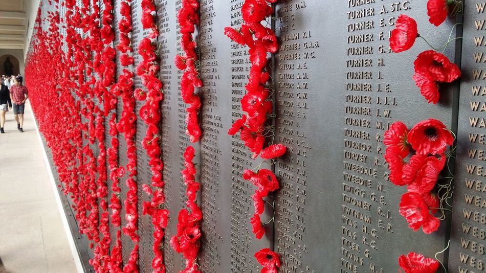 Poppies adorn the Roll of Honour at the Australian War Memorial in Csnberra. A Last Post ceremony is held here every day at 4.55pm. Canberra Australian War Memorial Anzac Day Gallipoli Eyeemphotography Halfcenturytraveller Eye4photography  Travel Traveling Travel Photography EyeEm Best Shots EyeEmBestPics EyeEm Gallery EyeEmbestshots Eyemphotography Soldiers WWII Turkey Australia