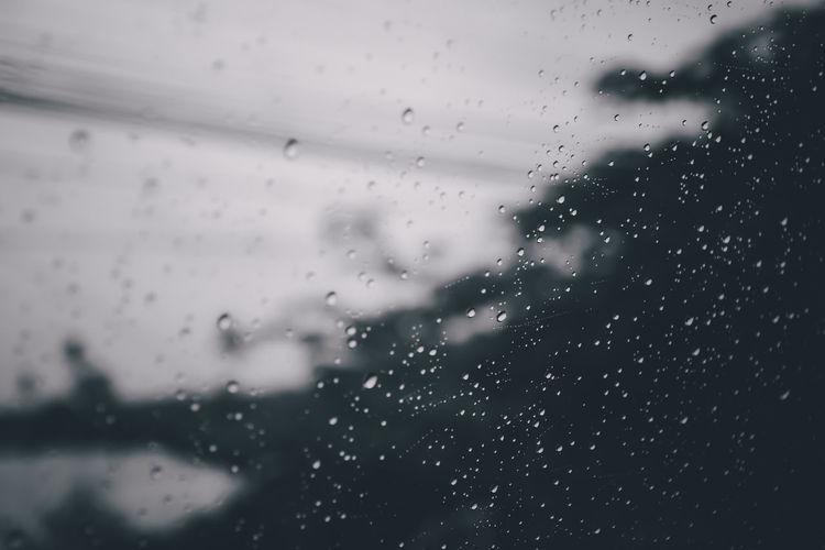 Drop Wet Rain