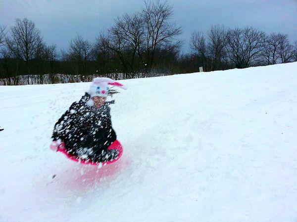 Snow Snow ❄ Sledding Winter United States Wintertime Winter Wonderland Sleigh Childsplay Fun The Great Outdoors - 2015 EyeEm Awards Great Shot Winterscapes Snowing Snow Day Showcase: November
