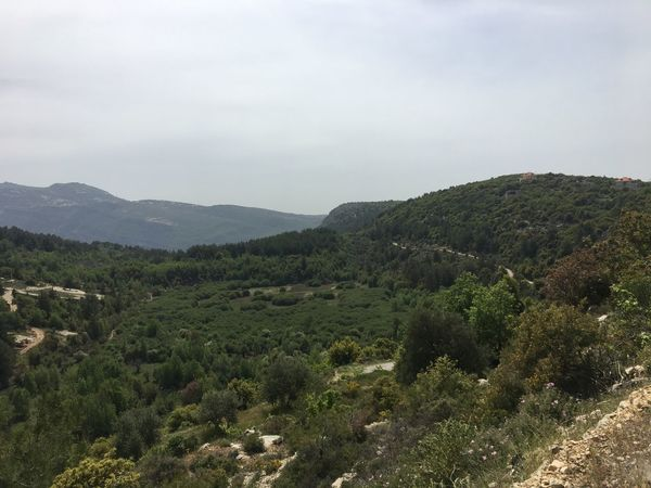 LiveLoveLebanon Long Drive Tanourine