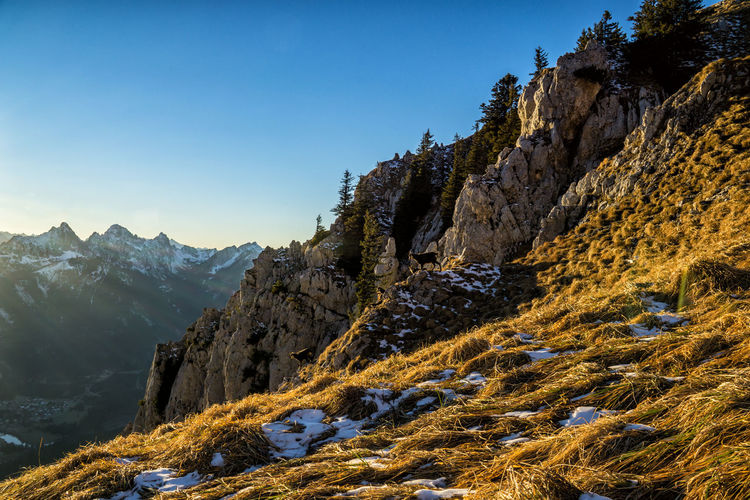 Autumn on the mountains Mountain Beauty In Nature Mountain Range Sky Tranquility Tranquil Scene Scenics - Nature Clear Sky Rock Nature Non-urban Scene No People Plant Day Idyllic Environment Remote Rock - Object Landscape Solid Formation Outdoors Mountain Peak Alps Tyrol Austria Autumn