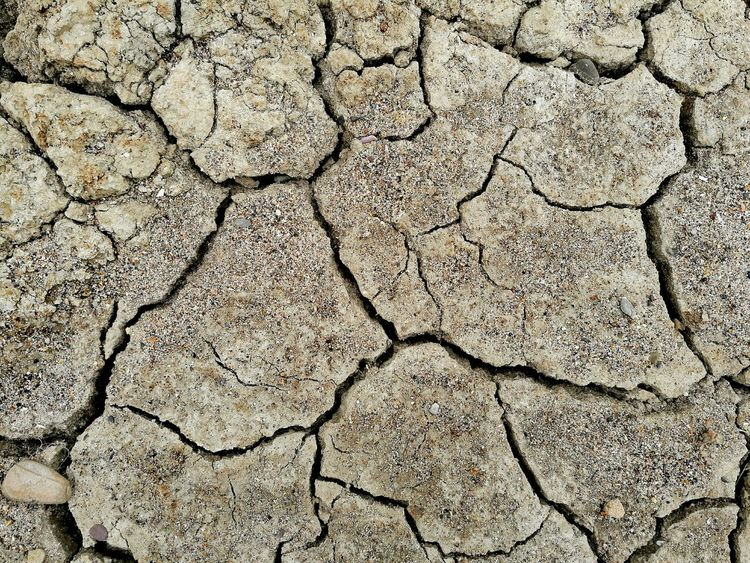 Scorched earth☀, background. Cracked Full Frame Drought Backgrounds Textured  Arid Climate Pattern High Angle View Close-up HuaweiP9Photography Calming Background Textures And Surfaces Textures And Shapes Textures In Nature Nature No People Scorched