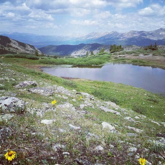 Lake at top of a mountain pass Mountains Lake Nature Flowers Colorado Beautiful Nature Beautiful Day Clouds And Sky Valleys Valley View Backgrounds Cloud - Sky Valleybelow Mountain Mountain Range Mountain View Lake View Lakeview Scenery Shots Scenic Scenery_collection Yellow Flower Valley Clouds & Sky Cloud