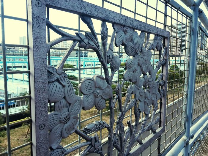 Flowers Fence City Tokyo Japan Man Made Nature Adapted To The City