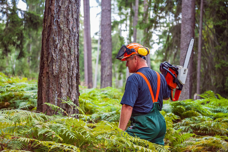Man working in forest