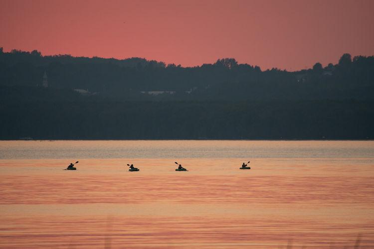 Silhouette birds on a orange sunset
