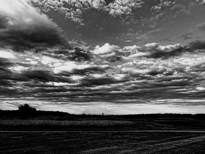Cloud formations over an empty golf course. Cloud - Sky Tranquil Scene Nature Landscape Scenics No People Rural Scene Tree Artistic Photo EyeEmNewHere EyeEm Best Shots EyeEmBestPics Art Is Everywhere Exceptional Photographs Popular Photos See The World Through My Eyes Golf Course Grass Golf Greens