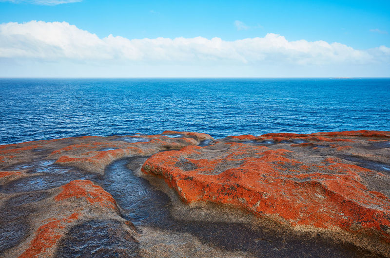 Sea Sky Horizon Over Water Horizon Water Beauty In Nature Scenics - Nature Cloud - Sky Rock Rock - Object Tranquil Scene Nature Tranquility Solid No People Blue Day Land Idyllic Outdoors Australia Kangaroo Island