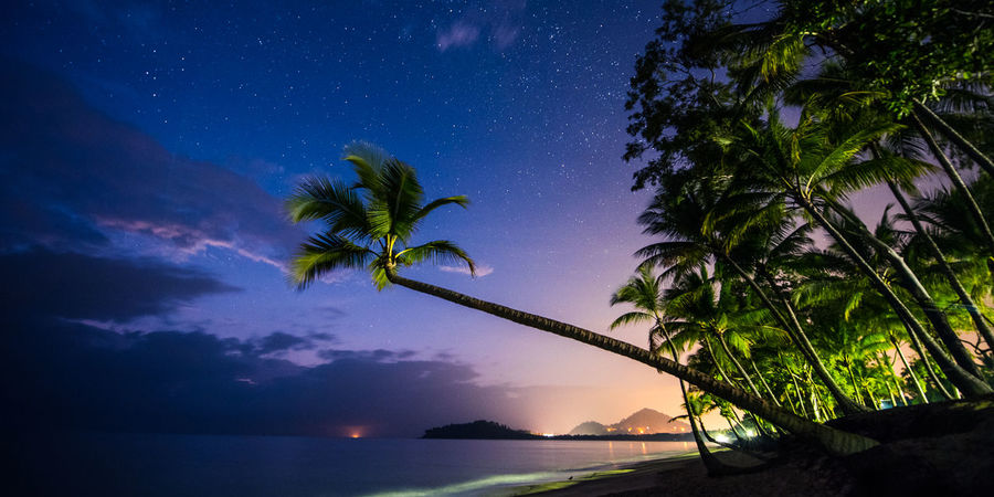 EyeEm Nature Lover Lost In The Landscape Nature Nightphotography Palm Tree Astronomy Beach Beachphotography Beauty In Nature Horizon Over Water Low Angle View Milky Way Nature Night Outdoors Palm Tree Scenics Travel Sky Star Star - Space Tranquil Scene Tranquility Tree Landscape_photography Summer Exploratorium