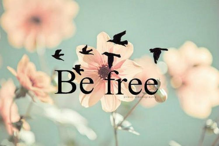 I#want#to#be#free#flower#and#bird#forever