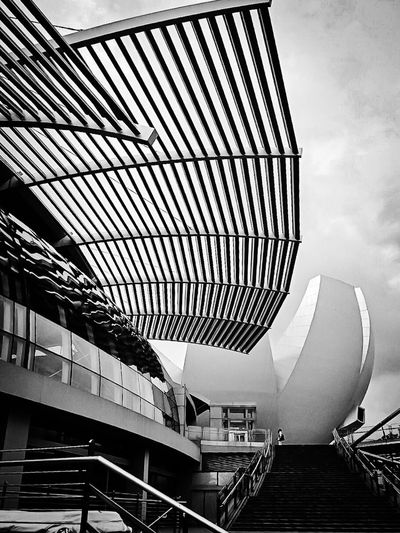 Art Science Museum  in Singapore Architecture Architecture_collection in Blackandwhite Blackandwhite Photography Landscape_photography Iphonephotography Indonesia_photography
