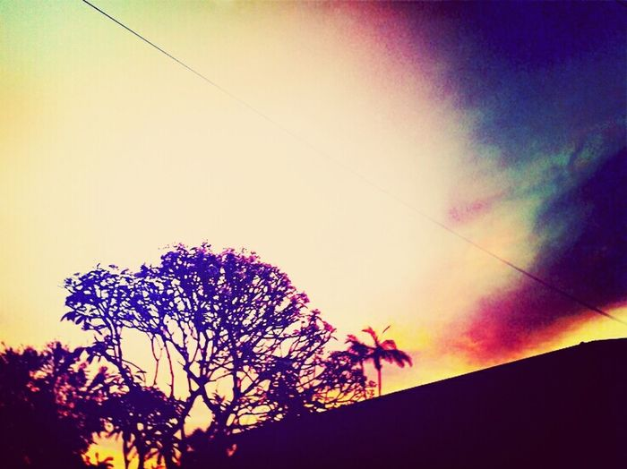 Afternoon walks with the boyfriend. Beautiful sunset.